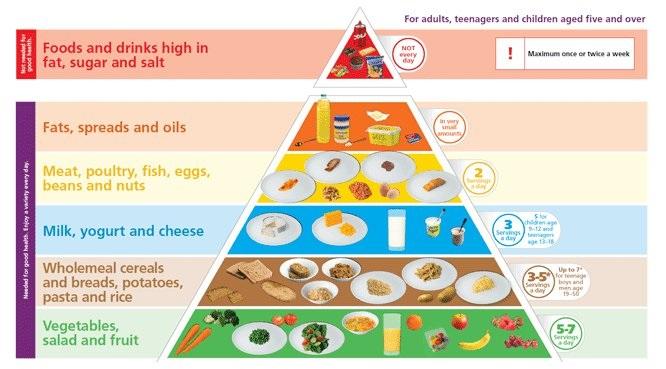 food pyramid - erect at will